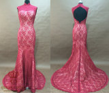 Lace Evening Dreses. Mermaid Lace Evening Dresses