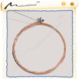 Acoustic Guitar String