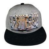 Hot Sale Custom Cap with Logo Sk1629