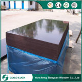 18mm Marine Construction Concrete Formwork Shuttering Film Face Plywood
