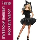 Halloween Fairy Witch Adult Lady Costume (L15276)
