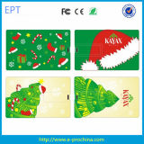 Hot Christmas Promotion Credit Card USB Flash Drive (EC502)