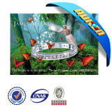 2013 Newly Decoration 3D Animal Pictures of Dolphin