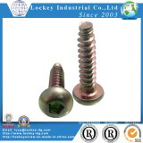 Roud Head Thread Forming Screw