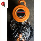 Hsz Type Top Quality 3t Chain Block