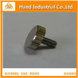 High Quality SS304 Knurled Thumb Micro Screw