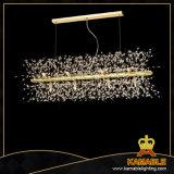 Modern Hotel Decorative Acrylic Pendant Lighting (P512-12)
