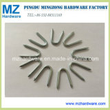 Galvanzied U Fence Staples U Type Nail with Diamond Point