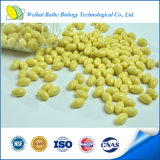 GMP Certified Nutritional Supplement Health Food Ginseng Capsule