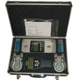Dynamometer and Crane Scale (DL-W)