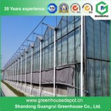 Hot Sale Plastic PC Sheet Cover Green House