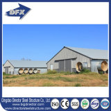 Africa Hot Selling Poultry House/Commercial Chicken Houses