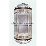 Fujizy Panoramic Cheap Elevator Ascensor 2004