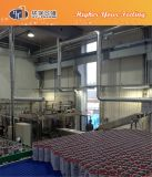 Complete Canned Soft Drink Filling System