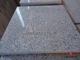 New G635 China Rosa Porrino Pink Granite Kitchen Flooring Tile