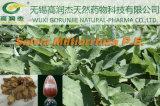 Salvia Miltiorrhiza P. E., Tanshinone Iia Sulfonic Sodium 2%~20%