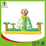 Amusement Park Commercial Inflatable for Kids