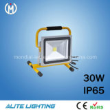 IP65 30W LED Light (AF13-30W)