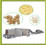 Stainless Steel Hot Air Ginger Dryer