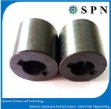 Sintered Ferrite Magnet Multipole Rings for Motor