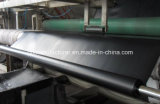 HDPE Pond Liners for Methane Generating Pit