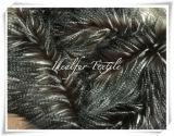 Faux Fur Fancy Feather Black/White/Coffee