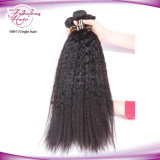 Brazilian Kinky Straight Bundle Virgin Yaki Straight Hair Weft