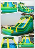 Green Inflatable Jungle Slide for Business Rentals (SL-002)