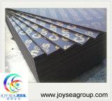 Anti-Slip Film Faced Plywood Building Material