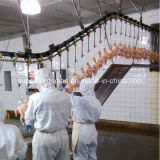 Poultry Slaughtering Line Machine Qdsh-017