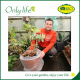 Onlylife BSCI Garden Plant Cover with Competitive Price