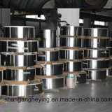 304 316L 321L 310S Stainless Steel/Ss Steel Strip for Tube with Ba Surface