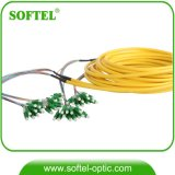 2-144 Core 0.9/2.0/3.0mm Single Mode Fiber Optic Bundle Pigtail