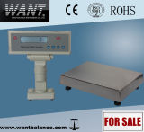 Table Scale with Stainless Steel Platform (10kg/11kg/12kg*0.1g)
