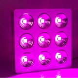 High Power Full Spectrum COB 900W LED Grow Light COB Chip for Commercial Cultivation