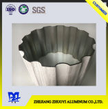 Aluminium Alloy Grain Transfer Printing Section for Decoration