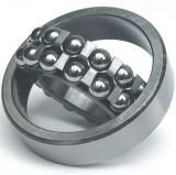 1204 Ektn9 NSK SKF Industrial Components Self-Aligning Ball Bearing