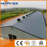 Steel Structure House with Full Set Automatic Equipment in Livestock