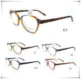 New Style Trendy Optical Frame