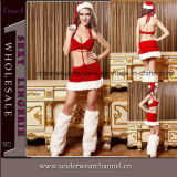 2015 Hot Girl Sexy Lingerie Christmas Adult Costume (TEH0058)