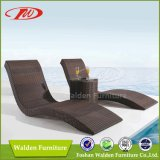 Hot Sale Lounge, Sun Lounger, Beach Chair (DH-9569)
