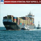 Sea Freight Shipping From China to Brazil