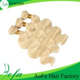 Fashion Hair Clip Virgin Hair Human Hair Extension