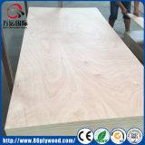 Bintangor / Okoume Veneered Poplar Timber Commercial Plywood