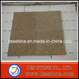 Chinese Granite Slab Tile Granite for Kitchen Tile/Countertop/Wall/Flooring