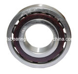 Angular Contact Ball Bearing (7011AC)