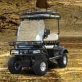 Electric Golf Buggy Utility Vehicle (DEL2022DL, 2-Seater)