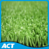 13mm Synthetic Grass for Tennis Field Sf13W6