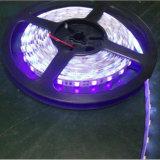 120PCS/M Purple Color LED Flexible Strip Light DC12V/24V