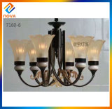 Painted Iron Chandelier with Glass Shade Lamp